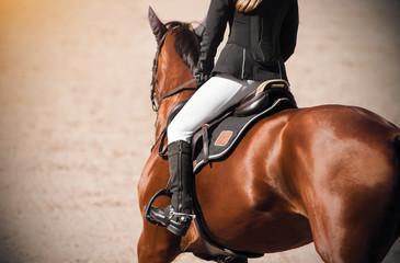 A girl rider on a Bay sleek horse gallops across a sandy field, illuminated by sunlight.