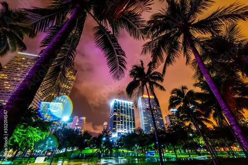 Obraz Skyscrapers and palm trees in Miami Bayfront park - fototapety do salonu