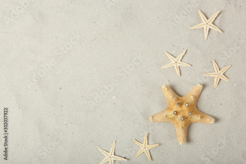 Photo sand, shells and starfish top view with place for text