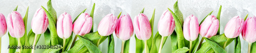 Photo  Pink tulips flowers