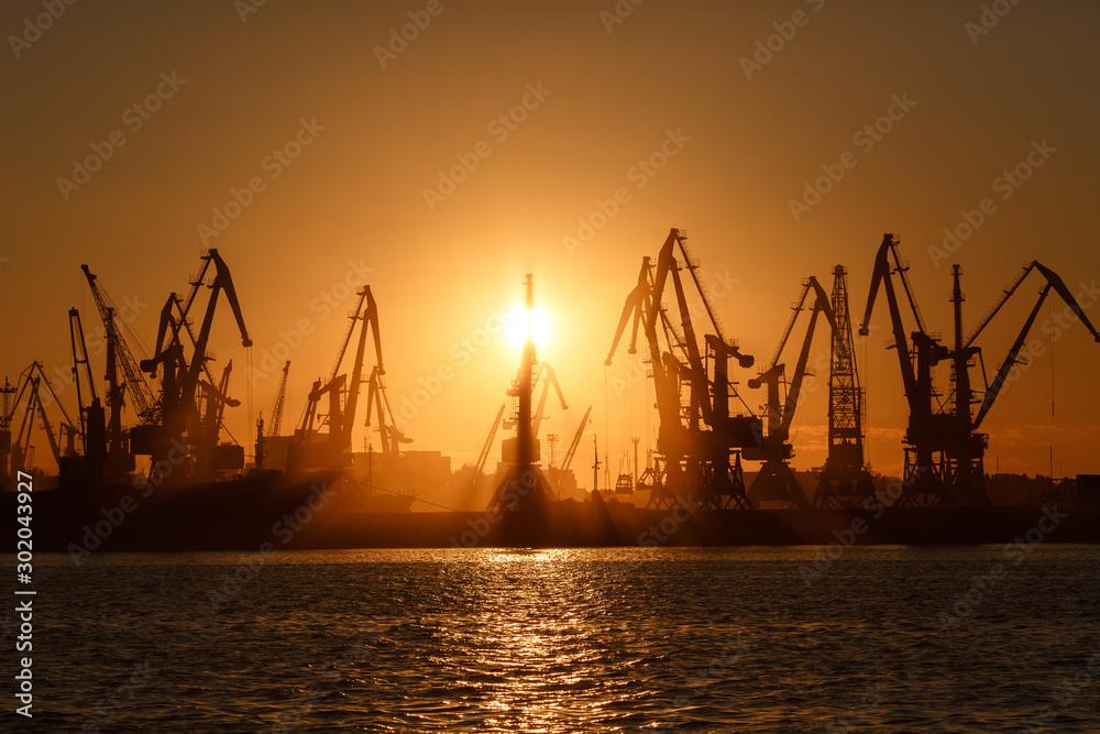 Fototapety, obrazy: Many big cranes silhouette in the port at golden light of sunrise reflected in water. Berdiansk, Ukraine