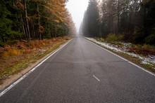 Landschaft Um Den Titisee - Sc...