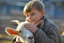 Joyful And Happy Boy Hugs And Strokes A Horned Goat, The Concept Of The Unity Of Nature And Man.