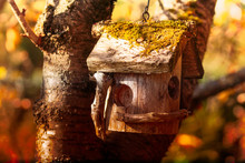 Moss Covered Old Wood Hanging Birdhouse