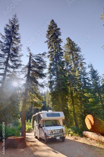 Fotografie, Obraz Campen mit dem Wohnmobil am Dorst Campground im Sequoia National Park, CA, USA
