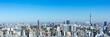 canvas print picture - (東京都-風景パノラマ)ラウンジから望む墨田方面の風景1