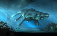 An Mosasaurus Swims Towards Yo...