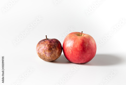 Valokuva  Rotten old and fresh ripe apples on a white background