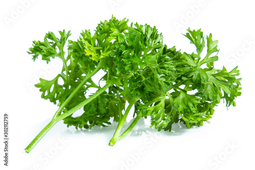 Fotografía  Parsley isolated on white background