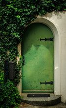Green Door With Ivy
