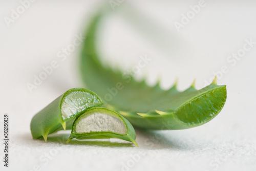 Photo Aloe vera leaves isolated on white background.