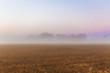 canvas print picture - Nebel über einem Feld