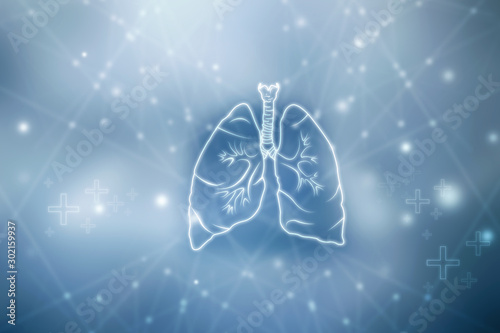 Fotografie, Obraz  Healthy Human Lungs 2d illustration