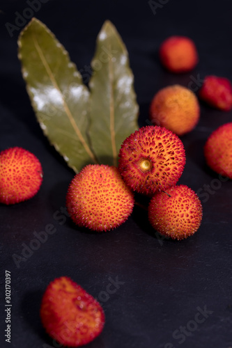 Photo red berries of the arbutus on black background