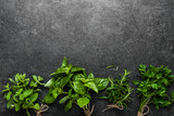 Fototapeta Tulipany - Bunch of fresh herbs from the garden. Mint, basil, parsley and rosemary herb on dark background.