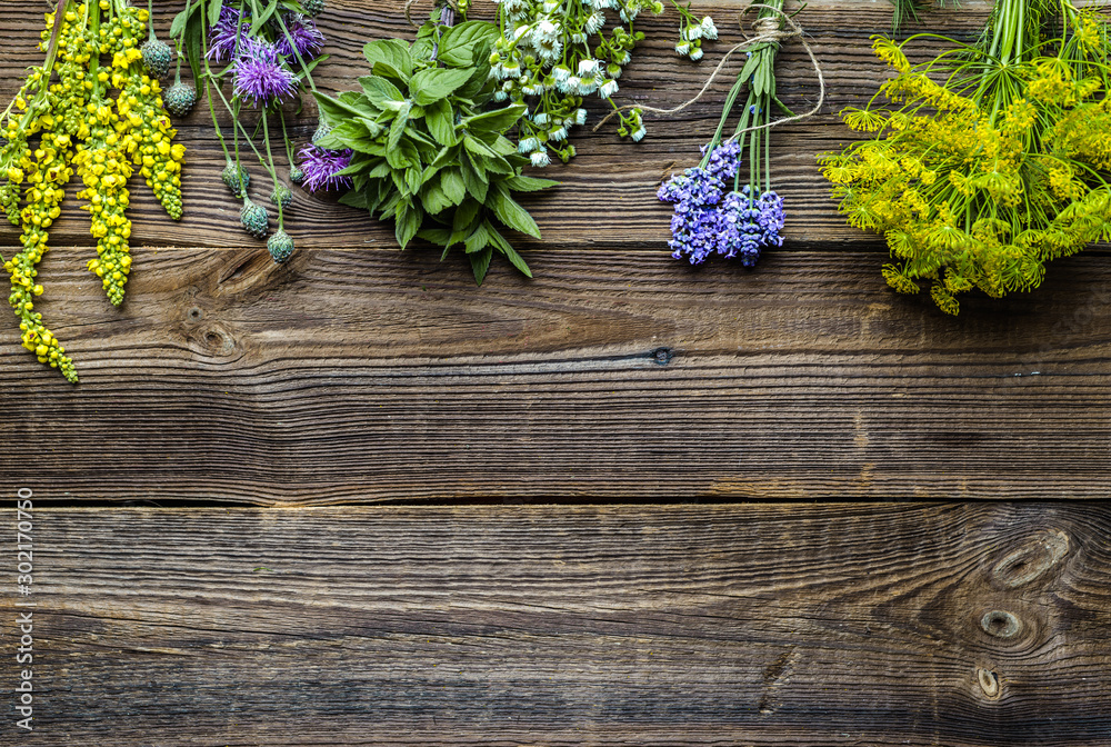 Fototapeta Assorted herbs from the garden on wooden table. Fresh herb on wood, top view