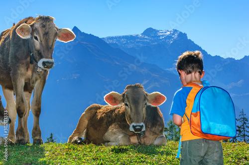 Cuadros en Lienzo furchtloser kleiner Junge auf einer Kuhweide