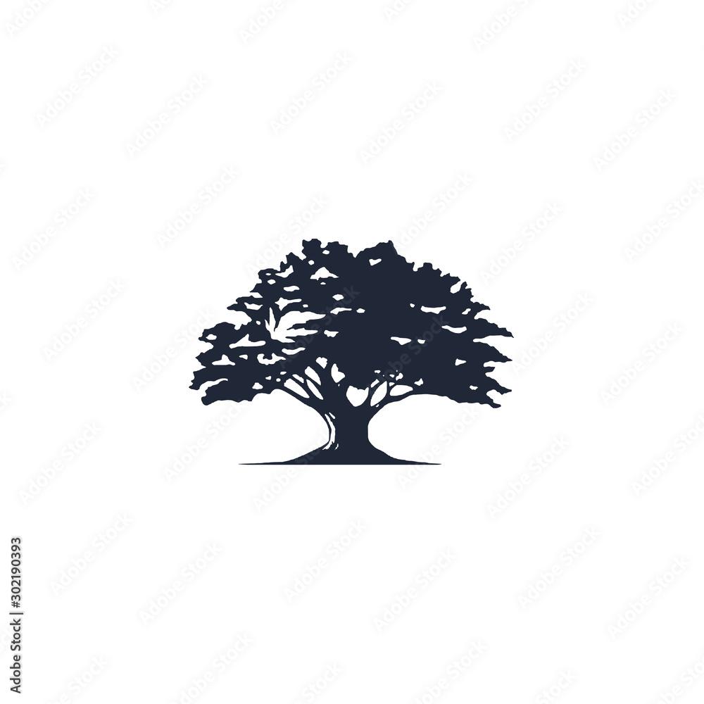 Fototapety, obrazy: tree logo vector