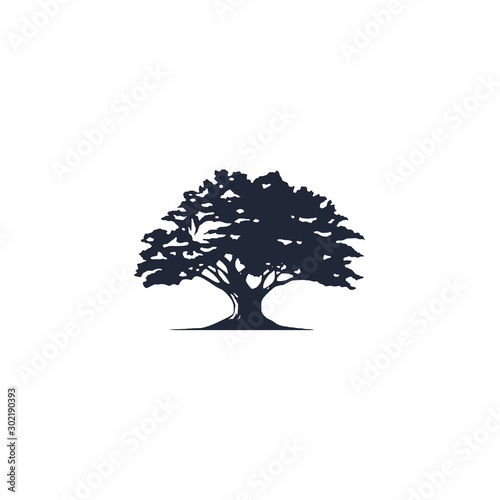 tree logo vector - 302190393