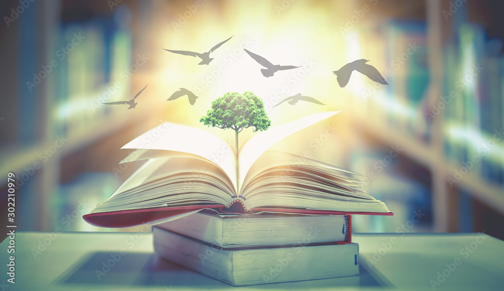 Fototapeta  The concept of education by planting knowledge trees and birds flying to the future to open old books in the library, beautiful blurred background