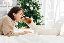 Lovely Woman And Dog Have Sweet Kiss, Feel Love To Each Other, Lie On Bed Against Fir Tree Decorated With Baubles, Enjoy Christmas Time, Have Festive Mood, Pose In Bedroom. Happy Winter Time