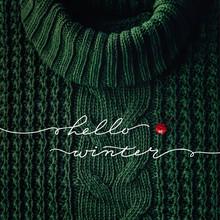 Hello Winter Concept. The Insc...
