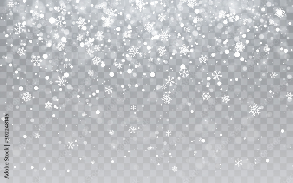 Fototapety, obrazy: Christmas snow. Falling snowflakes on transparent background. Snowfall. Vector illustration