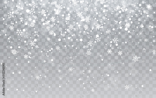 Obraz Christmas snow. Falling snowflakes on transparent background. Snowfall. Vector illustration - fototapety do salonu