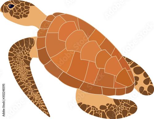 cartoon brown sea turtle. Vector illustration. Sea life Wall mural