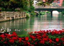 Peaceful River Walk Of San Antonio Texas