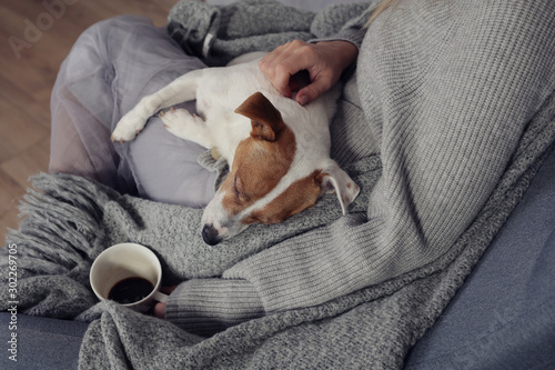 Carta da parati  Woman in cozy home clothes relaxing at home with sleeping dog Jack Russel Terrier, drinking coffee, Comfy lifestyle
