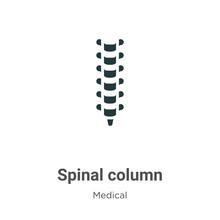 Spinal Column Vector Icon On W...