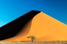 Sand Dune In Namib Naukluft National Park