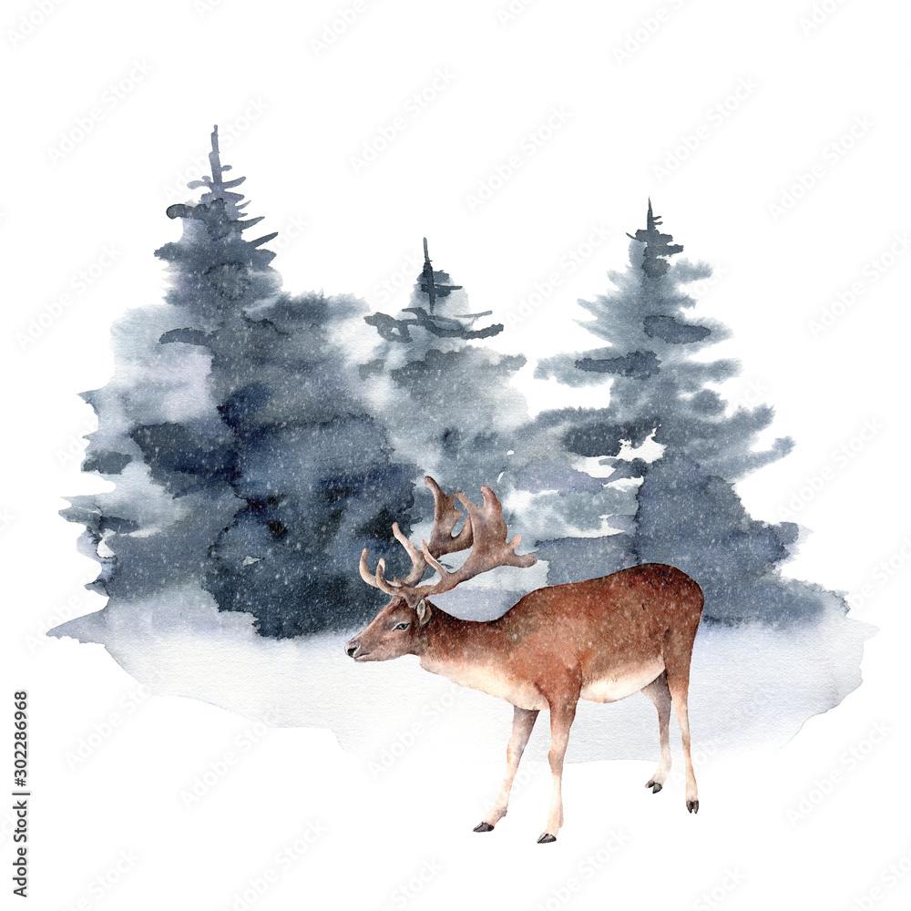 Akwarela jelenia w zimowym lesie. Wręcza malującą Bożenarodzeniową ilustrację z zwierzęcymi i jedlinowymi drzewami odizolowywającymi na białym tle. Kartka świąteczna do projektowania, drukowania, tkaniny lub tła. Dzika przyroda i mglisty. <span>plik: #302286968 | autor: yuliya_derbisheva</span>