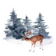 Watercolor Deer In Winter Fore...
