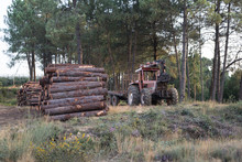 Old Tractor Next To Wood Logs ...