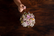 Girl's Hand Placing Wildflower In Vase From Above Dark Background