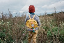 Back Of A Young School Boy Looking At A Field Of Wild Flowers Thinking