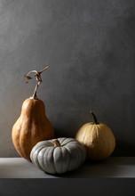 Pumpkins Against Wall