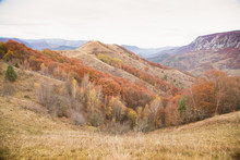 Autumn Golden Colors Mountain Landscape