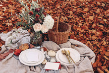 Autumn Picnic, Wedding Table Setting. Garden Party Celebration In Sunshine. Porcelain Plate, Muslin Throw Blanket, White Pumkins. Rose Flowers Bouquet With Olive Branches. Red Beech Leaves Ground.