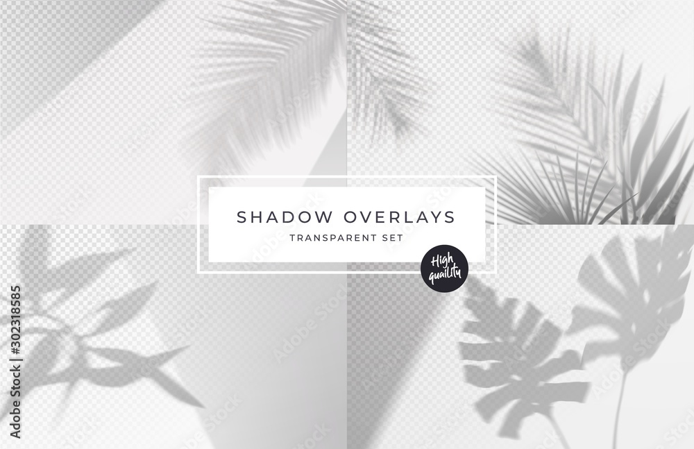 Fototapeta Set of shadow background overlays. Realistic Shadow mock up scenes. Transparent shadow of tropical leaves. Vector illustration