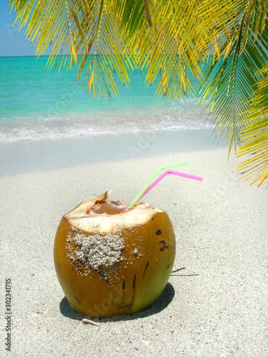Caribbean beach coconut and palm Wallpaper Mural