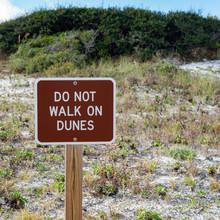 Do Not Walk On Dunes