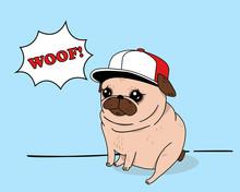 Creative Conceptual Vector Illustration. Pug Dog With Fashionable Snapback Hat Baseball Cap And Comics Cloud Saying Woof.