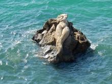 Taranto - Sirena Sdraiata Sull...