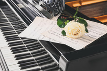 Beautiful Rose And Note Sheets On Grand Piano, Closeup