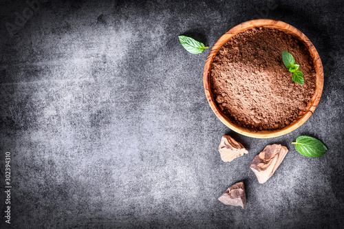 Cocoa beans and chocolate cacao powder with mint on top view Canvas Print