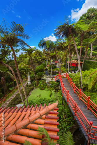 Monte Tropical Garden - Madeira Portugal Fototapete