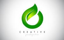O Leaf Letter Logo Icon Design In Green Colors Vector Illustration.